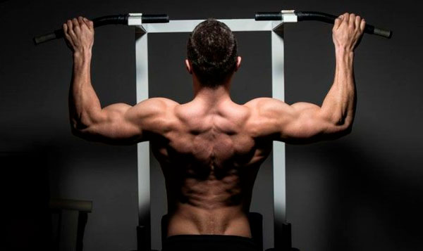 Perfect Pull Up Exercise