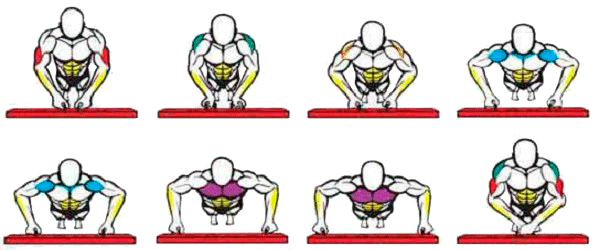 position in pullup