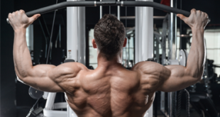 Best Lat PullDown Machine